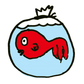 縁日の金魚のイラスト