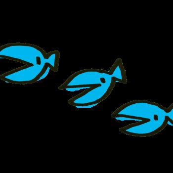 3匹の小魚さんのイラスト