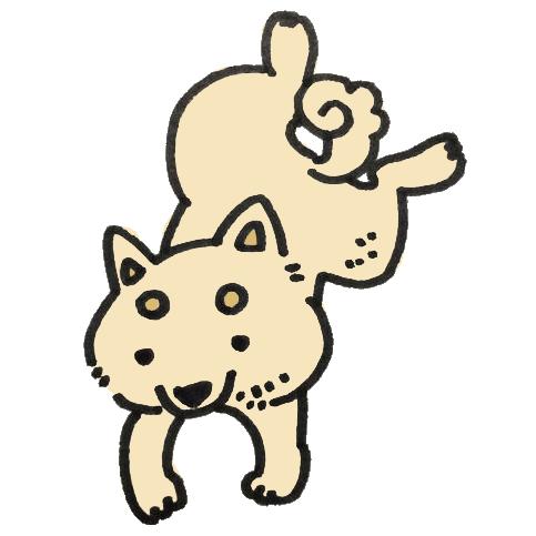 飛び移る犬