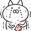 震えながら泣いている猫