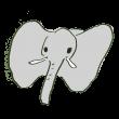 象さんのお顔