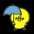 あきらかに小さい傘をさすひよこ