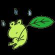 葉っぱを持ったカエル