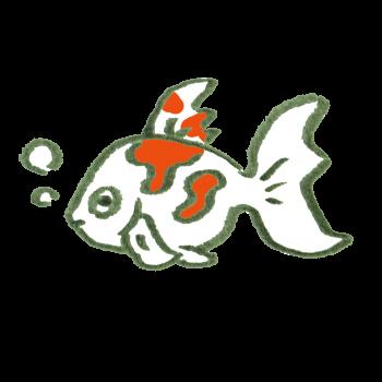 赤い模様のある金魚のイラスト