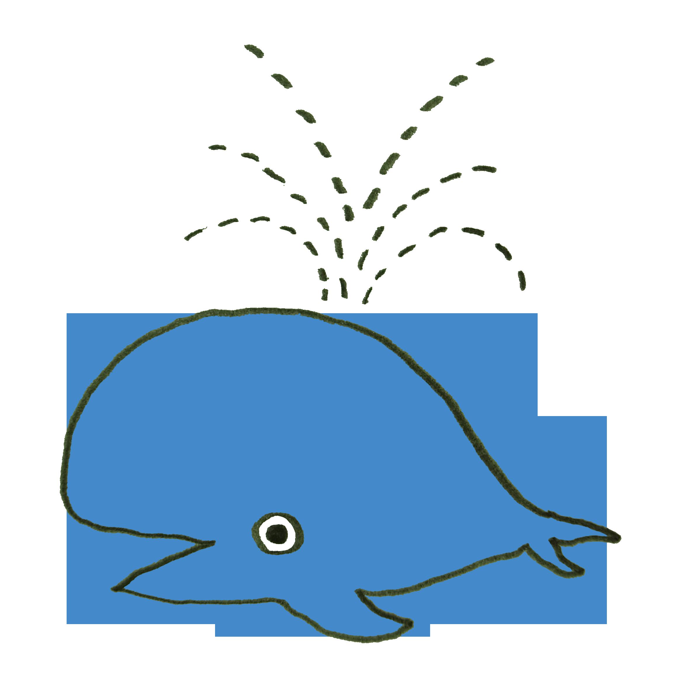 潮を吹くクジラのイラスト ゆるくてかわいい無料イラスト素材屋