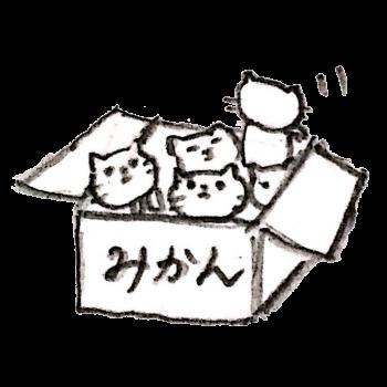 みかんの箱に入れられた猫のイラスト