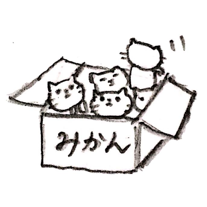 みかんの箱に入れられた猫