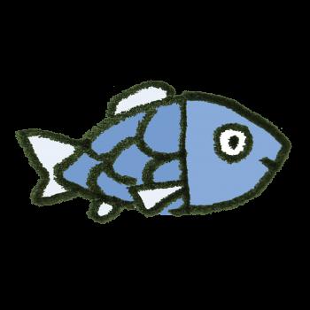 普通の魚のイラスト
