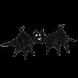 笑顔で飛ぶコウモリ