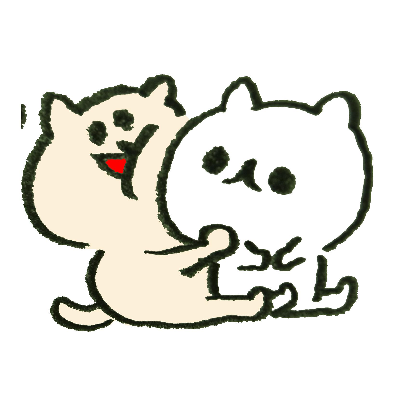 懐っこい猫