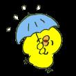 雨を楽しめるタイプのひよこ