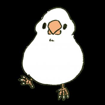 右足でポーズを決める白文鳥のイラスト