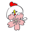 桜の花につかまるニワトリ