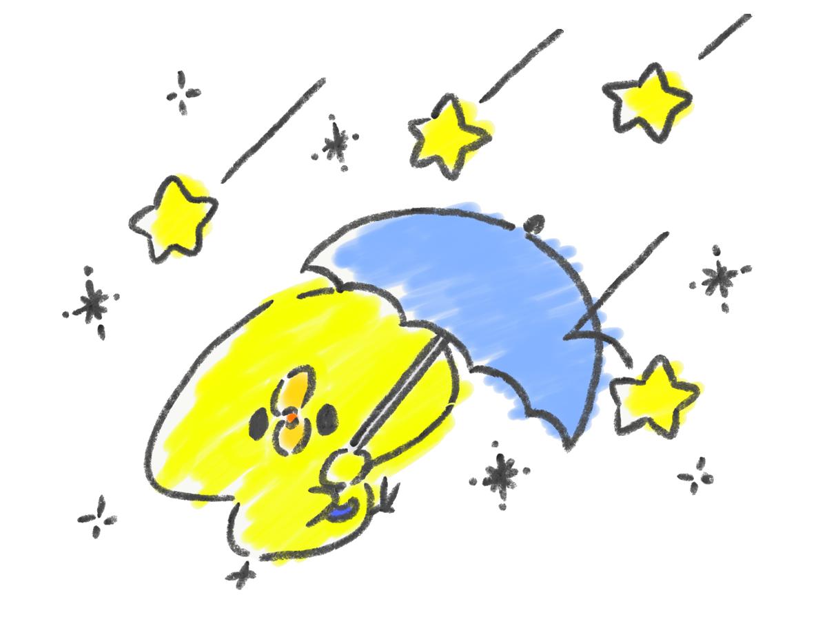星が降ってくる夜なので傘をさすひよこ