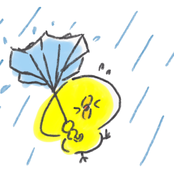 台風の強風で傘がこうもり傘になるひよこ