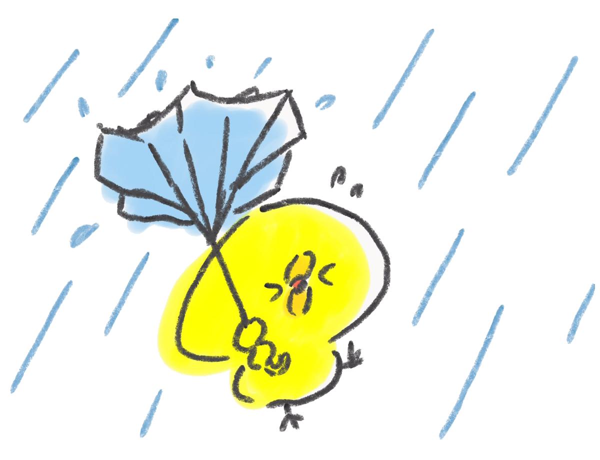 台風で傘がこうもり傘になるひよこ