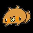 汗だくで寝込む熊