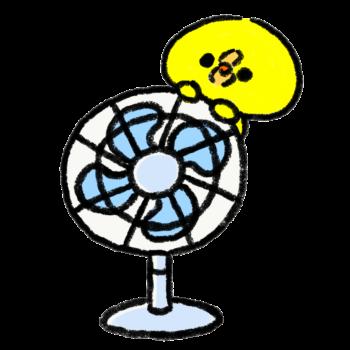 オンザ扇風機ひよこ