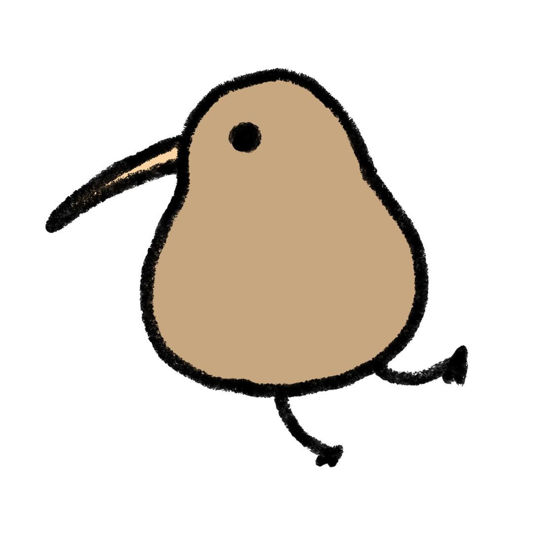キウイ(鳥)