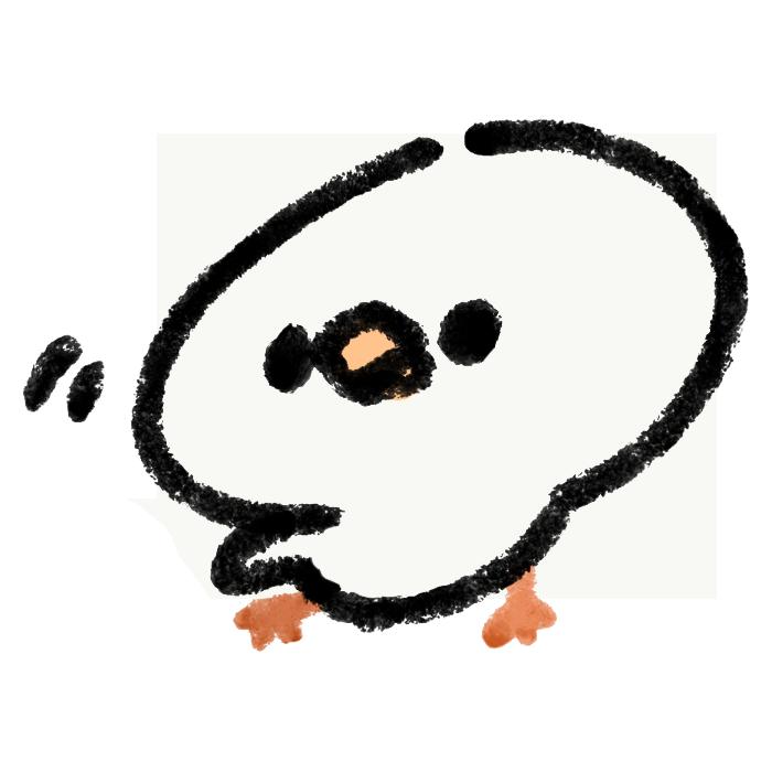 片方の羽を広げる文鳥