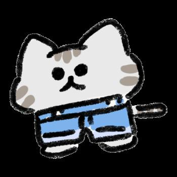 ハイウエストの猫