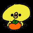 柿を抱えたひよこ