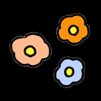 複数のお花