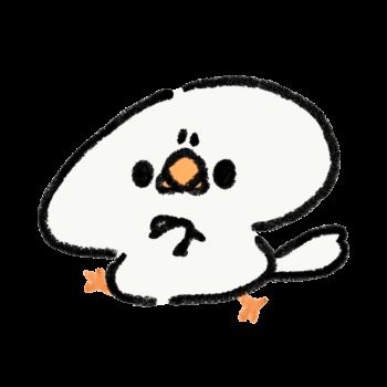 拒否する白文鳥