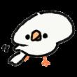 片方の羽を「スサー」する文鳥