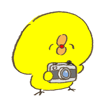 カメラを向けて笑顔をうながすひよこ
