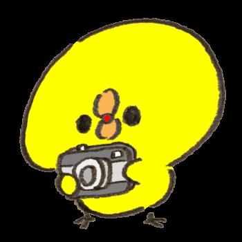 カメラのバッテリーを忘れたひよこ