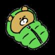 寝袋で眠る熊