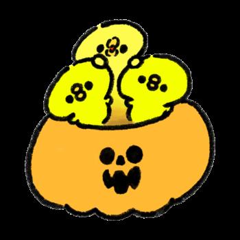 おばけかぼちゃから出てくるひよこ
