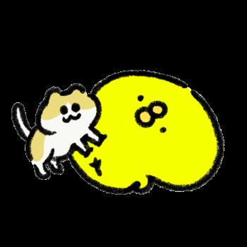 猫がお腹の上でふみふみ(GIFアニメ)