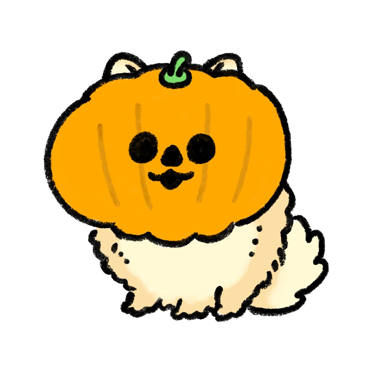 ハロウィンのかぼちゃをかぶったポメラニアン
